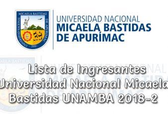 Ingresantes Examen a la Universidad Nacional Micaela Bastidas 2018-2