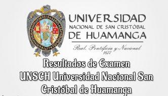 Ingresantes UNSCH Universidad Nacional San Cristóbal de Huamanga