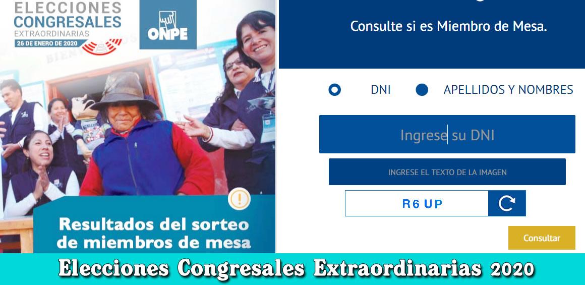 Miembro de Mesa Elecciones Congresales Extraordinarias 2020